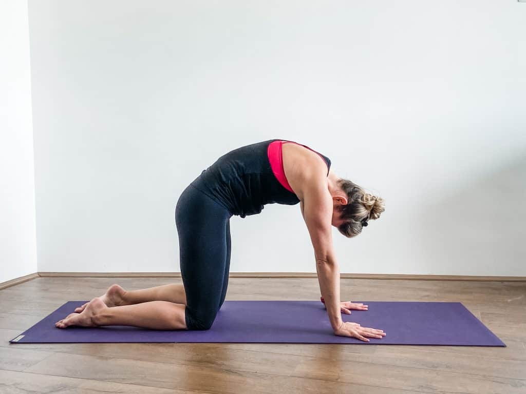 woman on a yoga mat performing cat cow yoga pose - yoga mats for sweaty hands