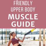 woman using a trx with text overlay beginner friendly upper body muscle guide