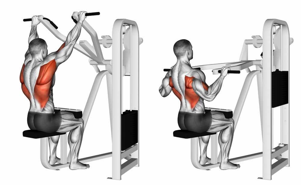 lat pulldown exercise